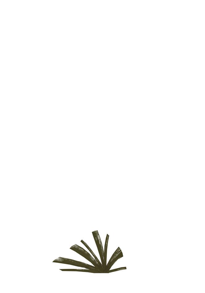 Plant_SmE2.PNG