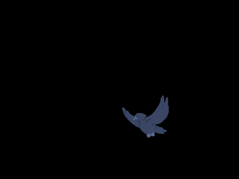 0602_Anim_BirdsLeftA30.png