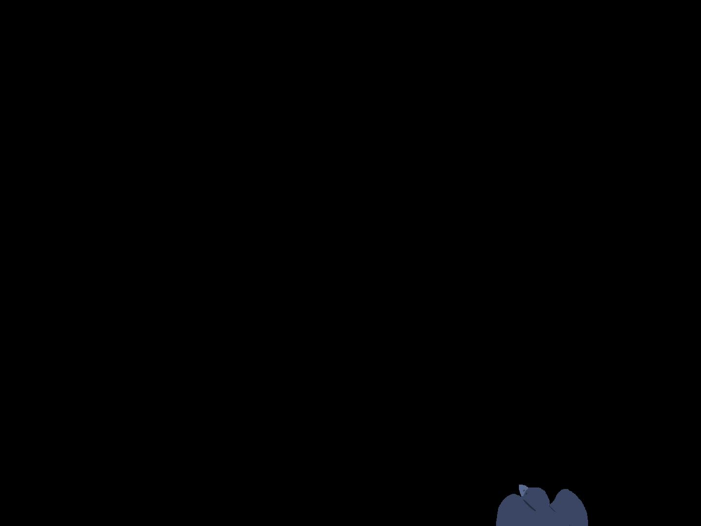 0602_Anim_BirdsUpA06.png