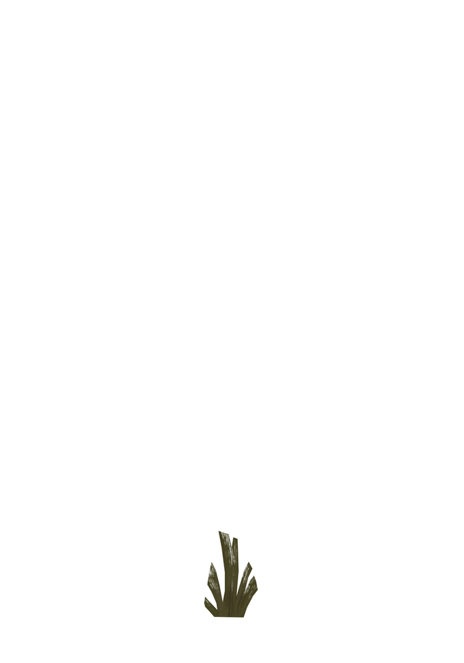 Plant_SmF2.PNG