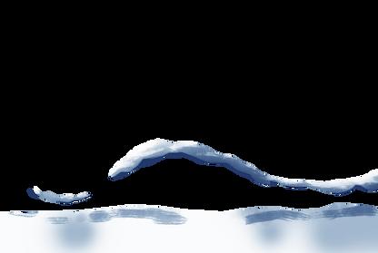 0601B_BG_puca snow.png