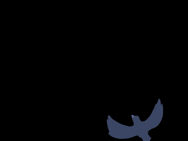 0602_Anim_BirdsUpA11.png