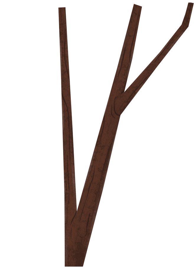 ThinTree_H2.png