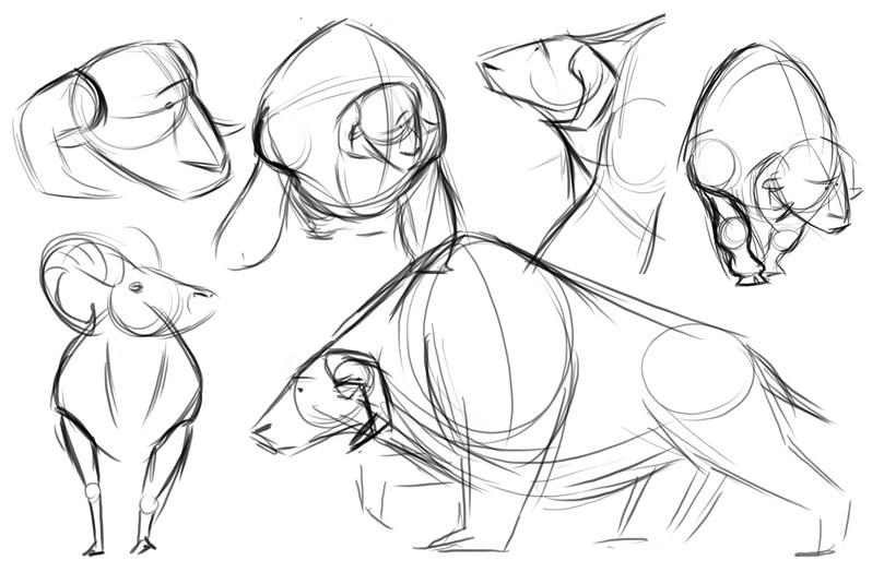 Puca Sketches 02.jpg