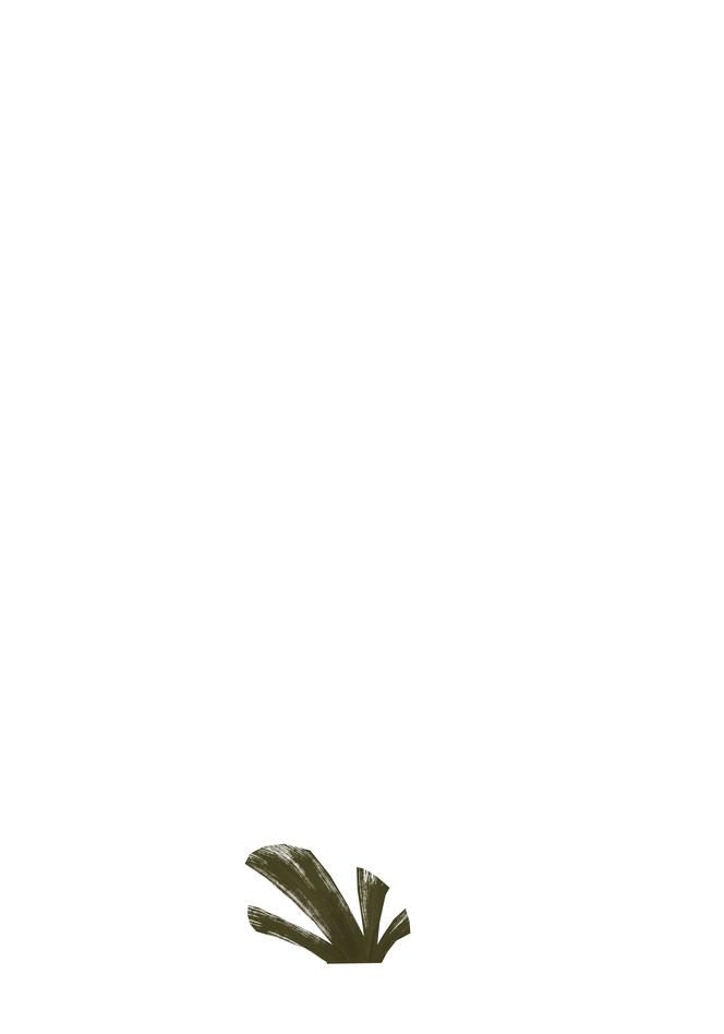 Plant_SmA2.PNG