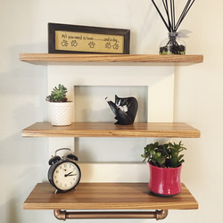 Emerson Shelves in Zebrawood