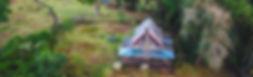 Castle Forest Lodge Kenya  by Yuri Yabi