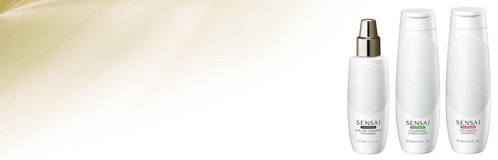 silky-banner-shidenkai-980x315.jpg