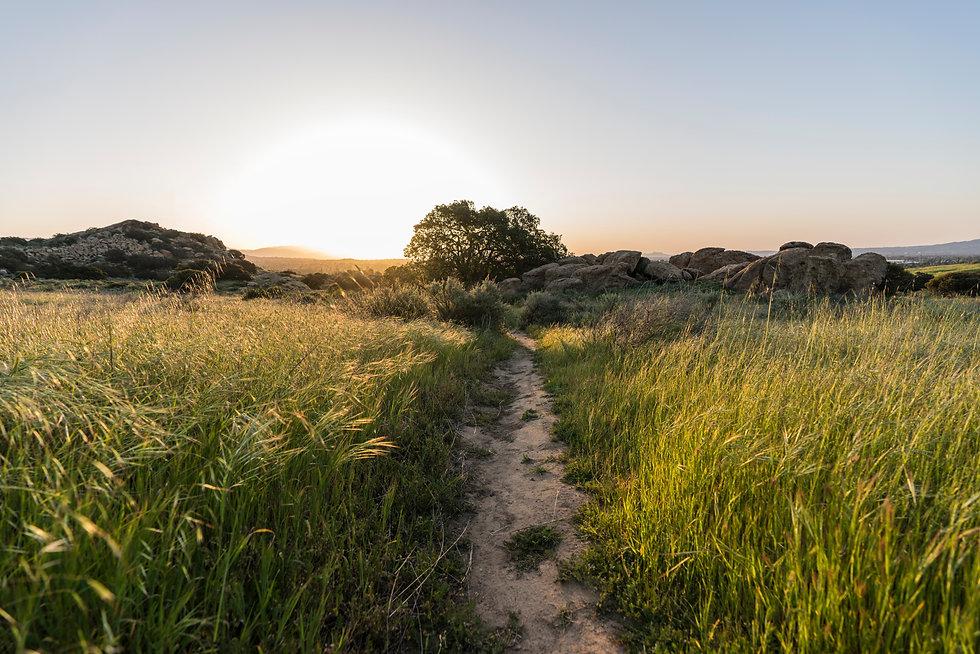 Sunrise meadow trail morning at Santa Su