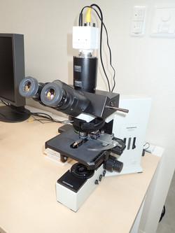 microscope 1.jpg