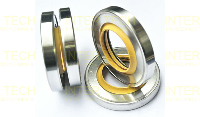 Metal Lip Seal