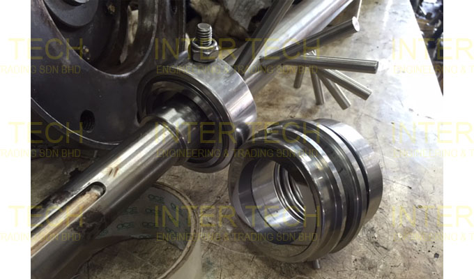 Mechanical Seal For Scraped Surface Heat Exchanger