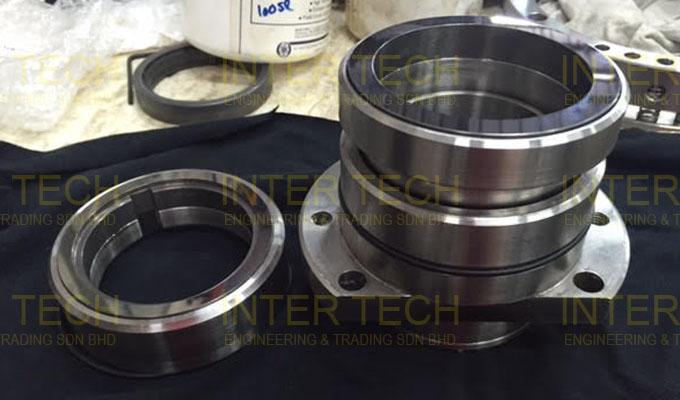 Gerstenberg Schroder Mechanical Seal For Scraped Surface Heat Exchanger