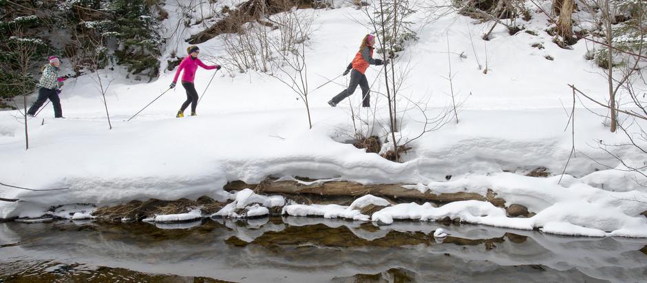 Stokely's Snowy Playground--season's finale