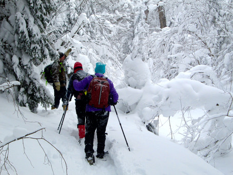 The Wilderness on Snowshoes
