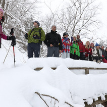 A group snowshoeing