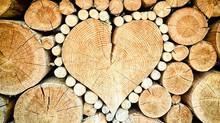 אהבה שנצמדת לנשמה