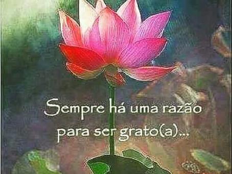 Felicidade através da gratidão
