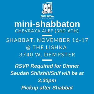 Alef Mini Shabbat Nov 16, 2018-8.png