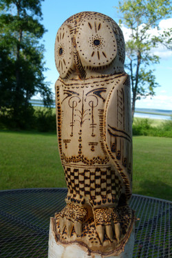 Birch Owl