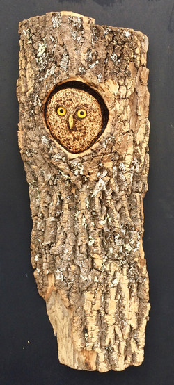 Owl for Benefit Auction