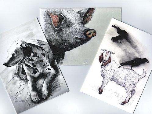 Set of three Notecards- Animals