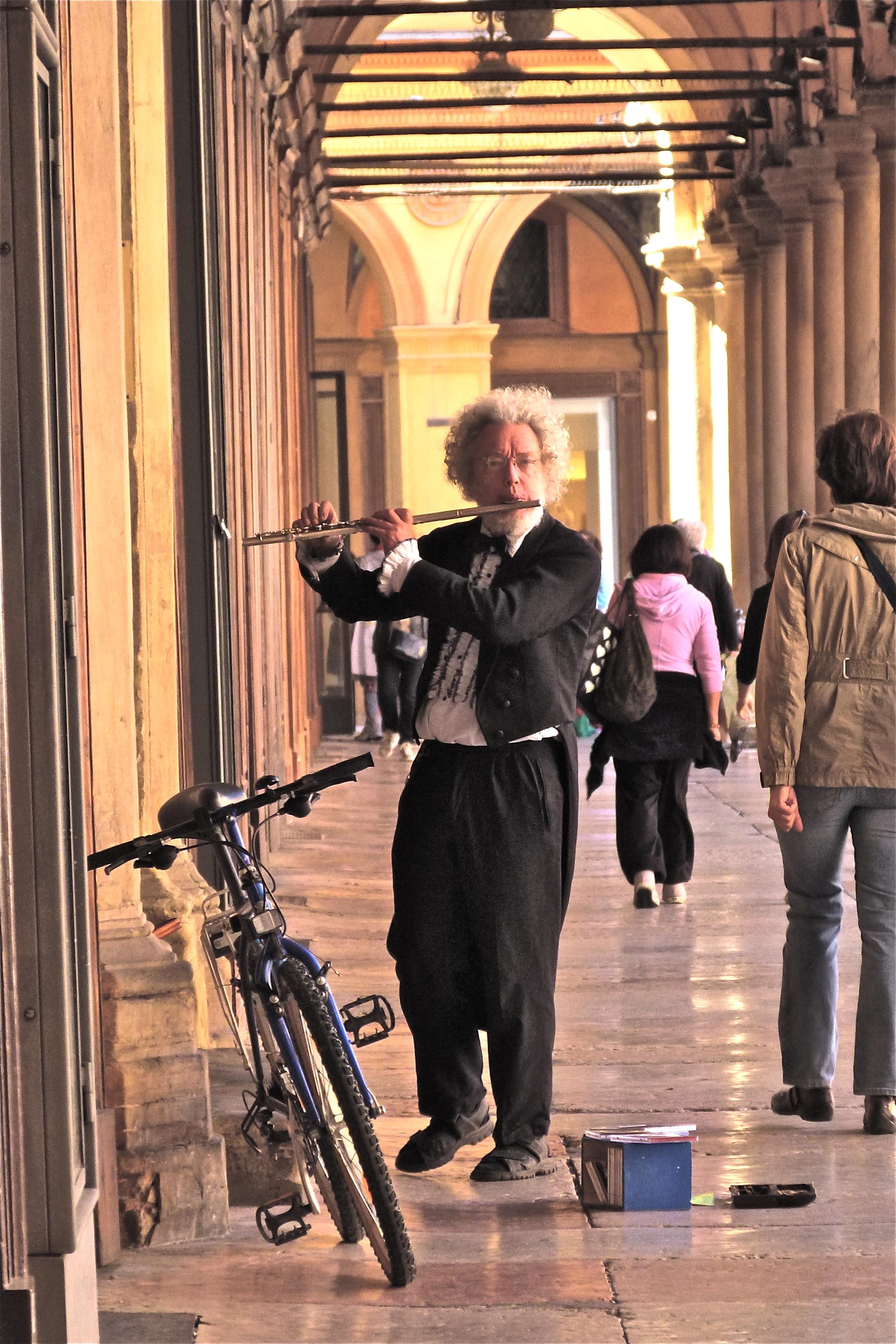 Playing Vivaldi. Bologna