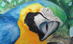 The Greeter- matted, unframed $90