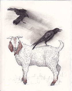 Goat and Crow -SOLD