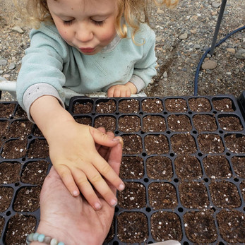 blessing the seeds
