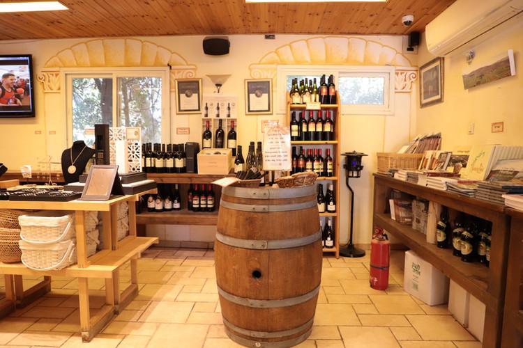 Shop in Ancient Shilo