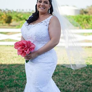 The Williams' Wedding