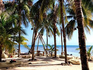 palmtree_nomads_islamujeres-beachclub-ho