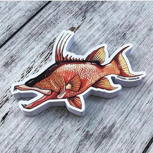Hog Fish - Chubbs Sketchbook Sticker