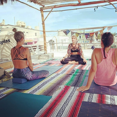 Laura Holmes Yoga Private Class - 1 1/2hr