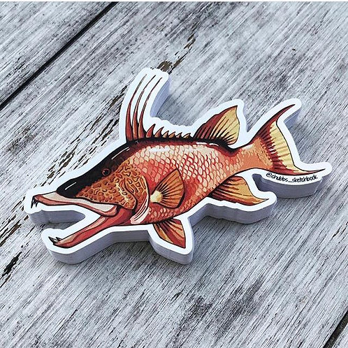 Hogfish Sticker - Chubbs Sketchbook
