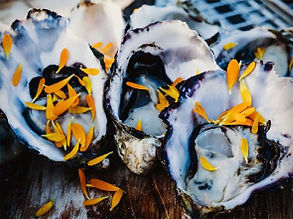 oysters-new.jpg