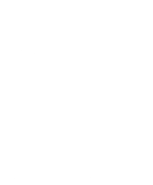 outlined logo.png