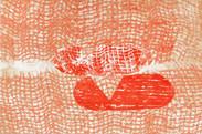 Monotype 25 x 16 cm 2012