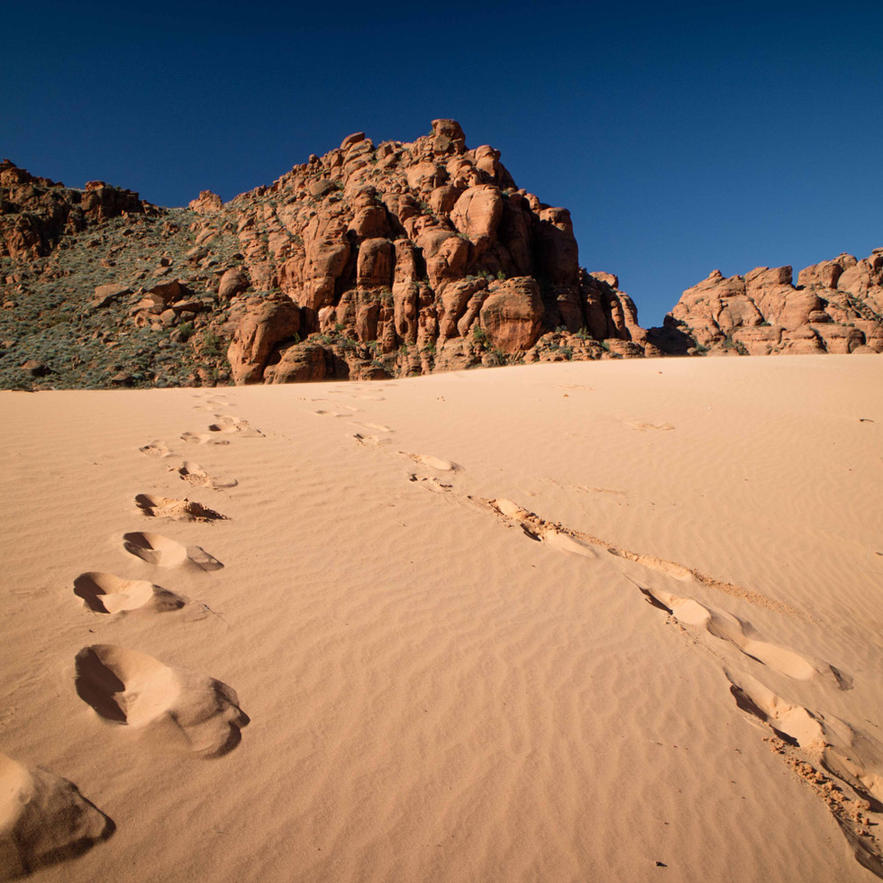 Valley of Fire Geology