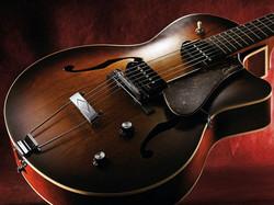 Godin Guitar