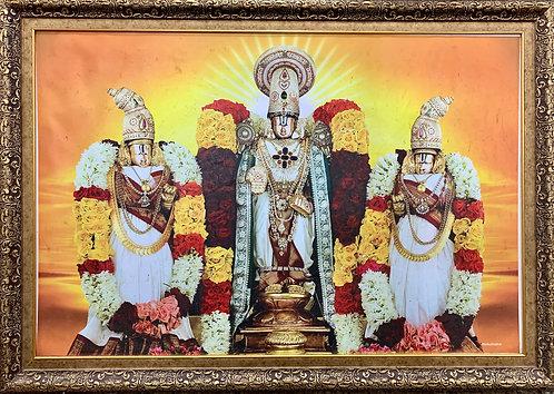 Srinivasa Kalyanostavam Laminate Frame Size 24/26