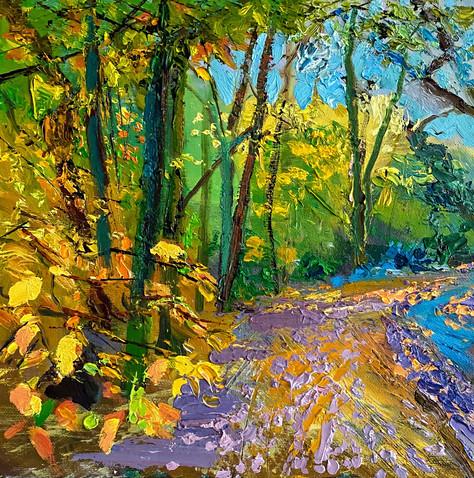 An-Autumn-path, Wimbledon Common