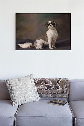 pet canvas.jpg