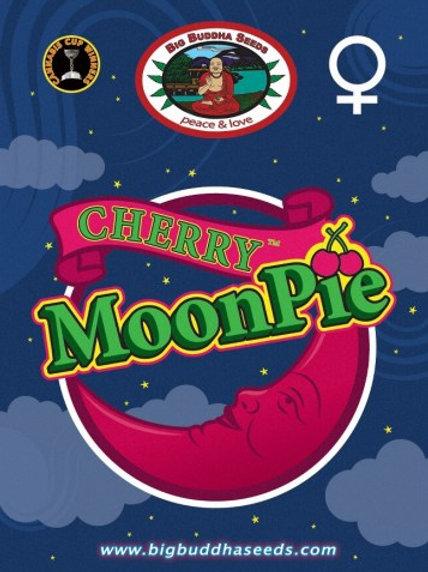 Big Buddha-Cherry Moon Pie Feminized