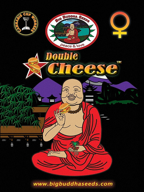 Big Buddha-Double Cheese Feminized