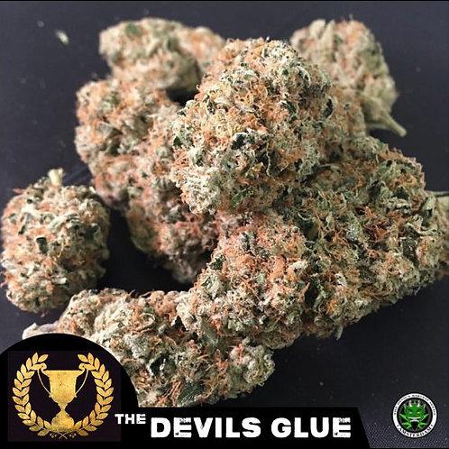Devils Harvest Seeds Devils Glue Feminized