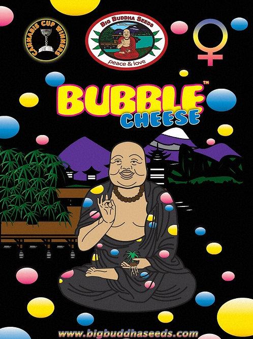 Big Buddha-Bubble Cheese Feminized