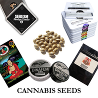 Cannabis Seeds.png