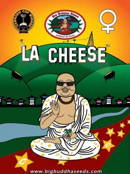 Big Buddha-LA Cheese Feminized